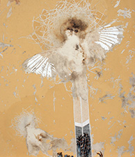 Vanessa Barbay Crucified (Winter Chough and Starling) 2011-12. Chough, starling, oil, delek and rabbit skin glue on canvas. 73 x 84.5 cm.