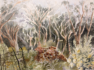 Adrienne Richards Springwood garden against bush 2016, watercolour and ink on paper, 56 x 76cm. Image courtesy of the artist.