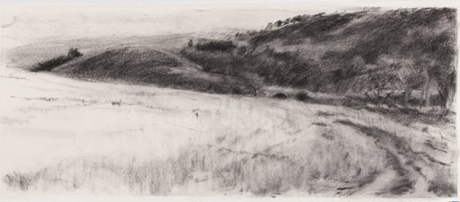 2. Towards Clancys.2012. 420 x 1045mm. Charcoal on paper copy