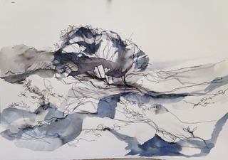 225 Valla Ink wash study 2014